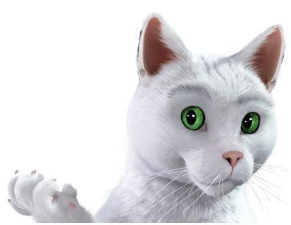 chat feu vert