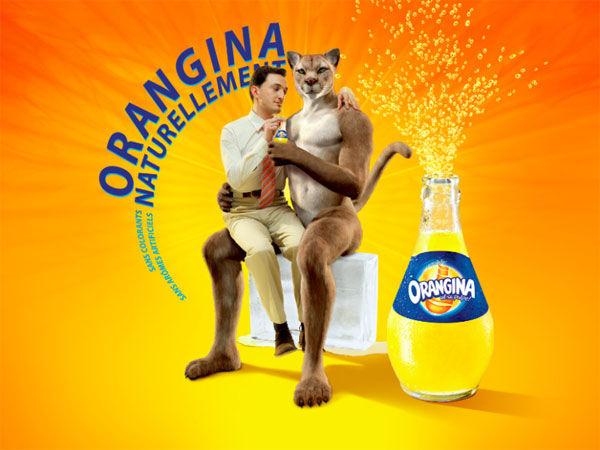 Orangina puma gay 2011