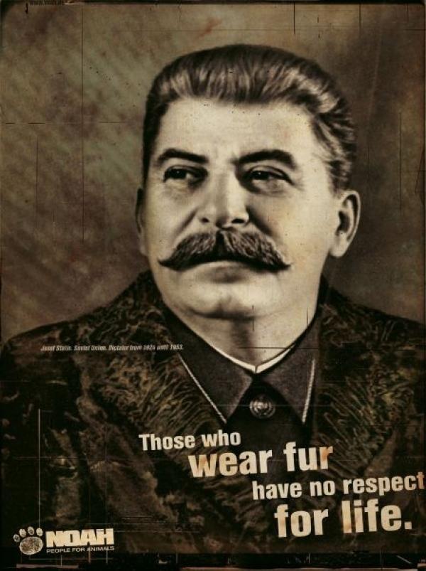 Pub Staline Noah