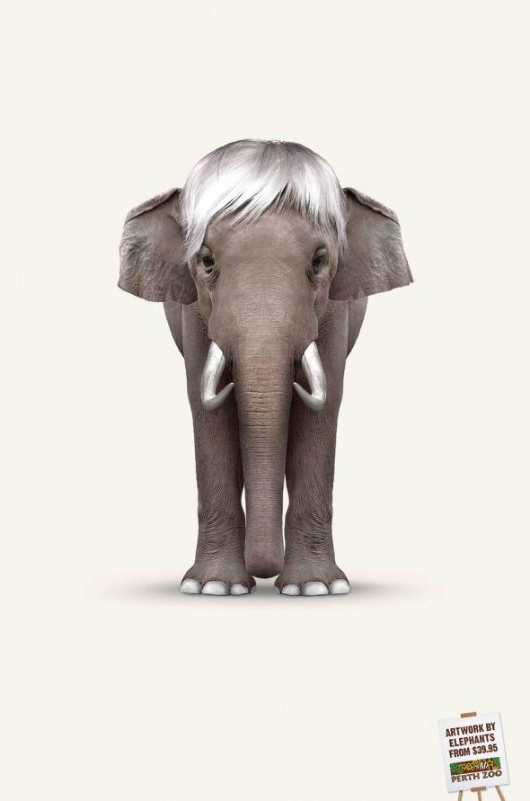 publicité pop art Perth Zoo