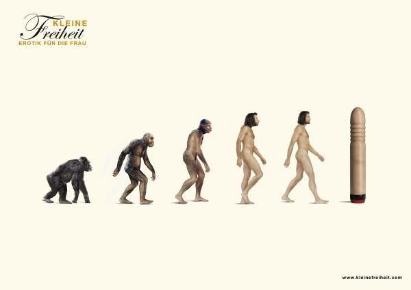 pub evolution Kleine Freiheit