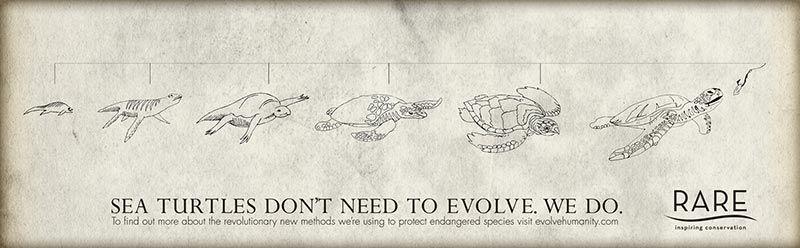 pub evolution Rare Inspiring Conservation