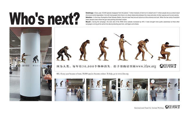 pub evolution IFAW
