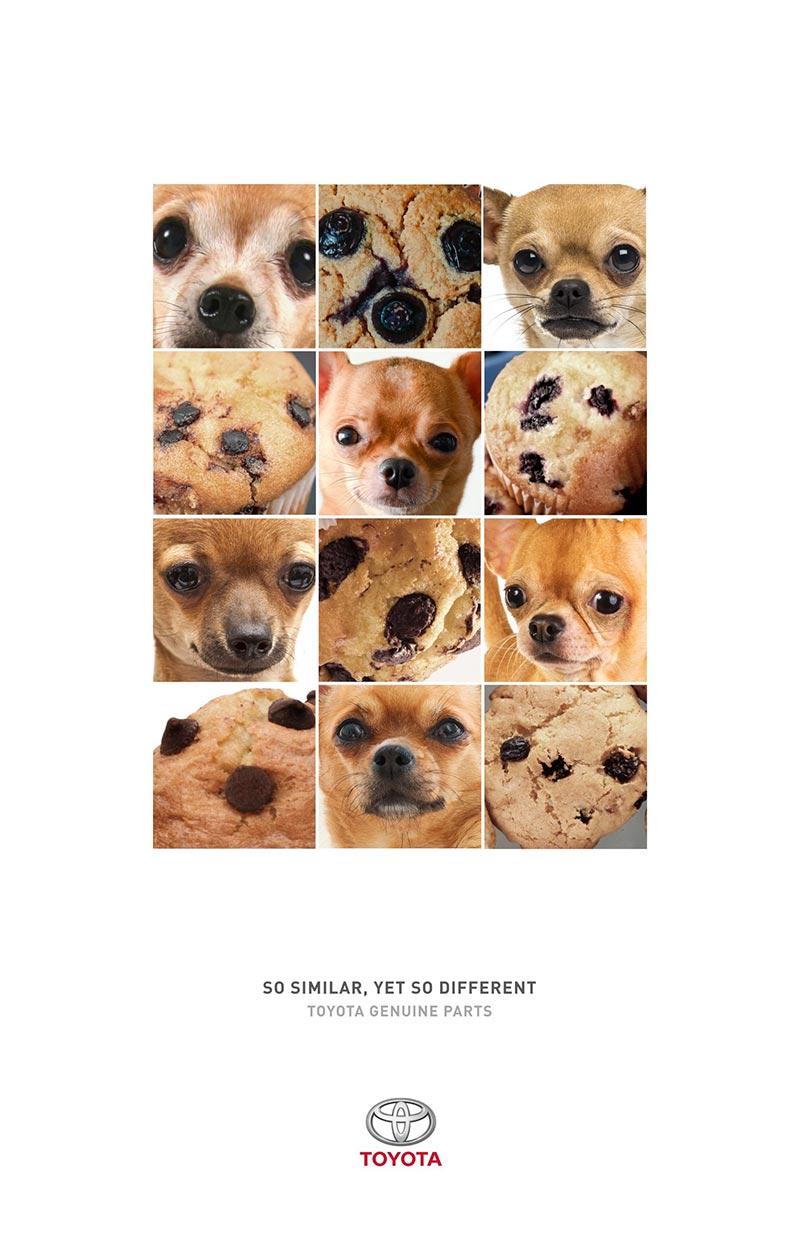 publicité mème muffin dog