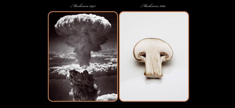 67 ans après, que reste-il d'Hiroshima ?